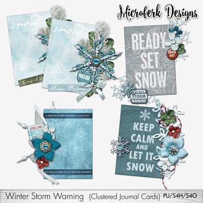 Winter Storm Warning Clustered Journal Cards